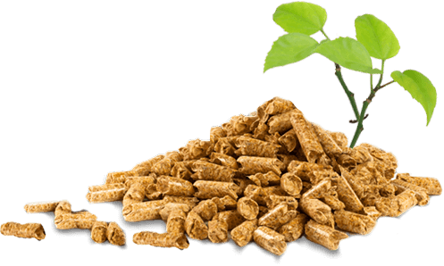 Pellets biocombustible
